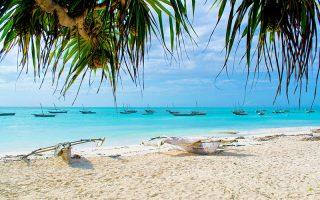 Zanzibar Plajları