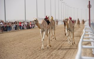 Shahaniya-Katar-Doha