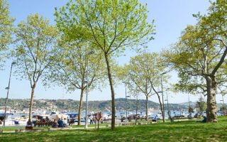 Bebek Parkı Arnavutköy İstanbul