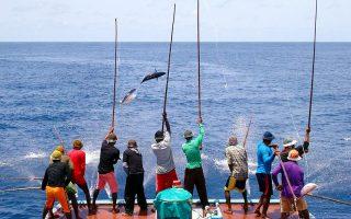 Olta Balıkçılığı Maldivler