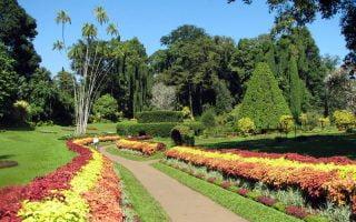 Seyşeller Botanik Bahçeleri