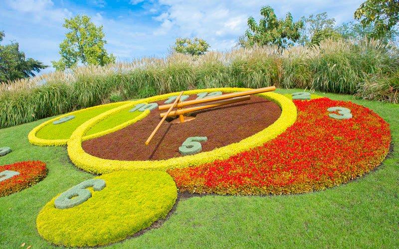 İngiliz Bahçeleri Çiçek Saati Cenevre