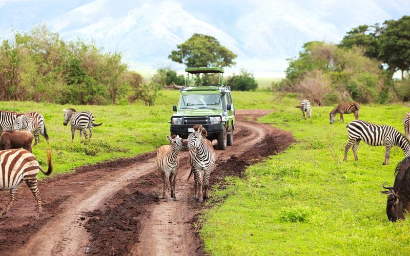 Hangi Mevsimde Nereye Gidilir Kenya