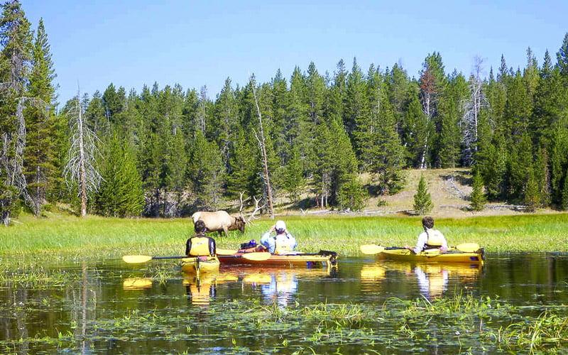 Yellowstone Gölü