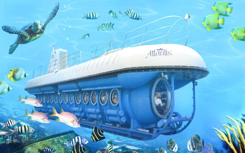 denizaltı büyük set resifi