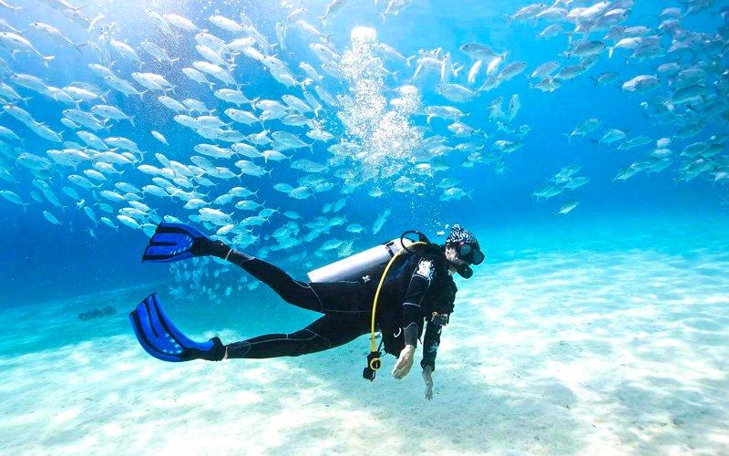 tüplü dalış büyük set resifi
