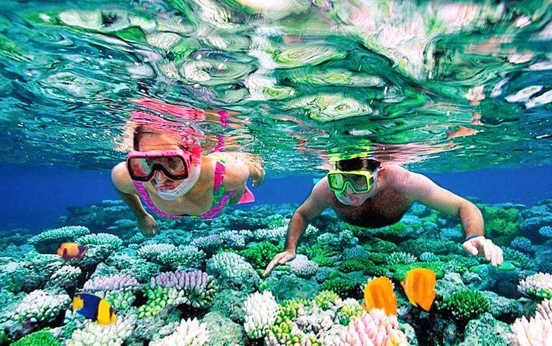 şnorkel