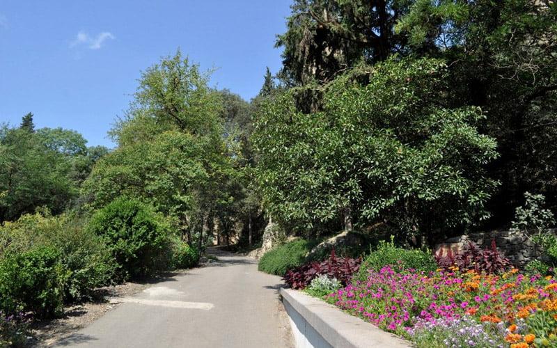 Tiflis-Botanik-Bahcesi
